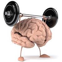 Neuroplasticita mozgu: to čo nás posúva a zároveň ničí