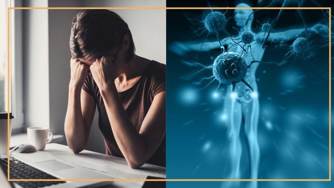 Vplyv chronického stresu na náš imunitný systém
